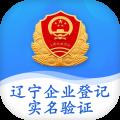 辽宁企业登记实名验证icon图