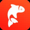 飞鱼优品icon图