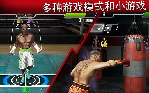real boxing 2 rocky截图2