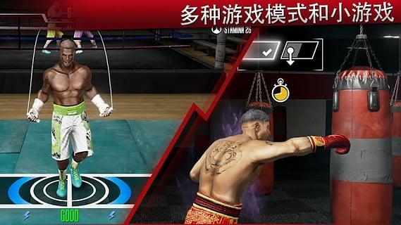 real boxing 2 rocky截图4