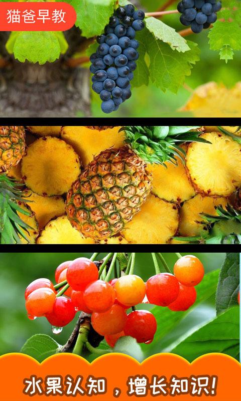 宝宝切水果截图4